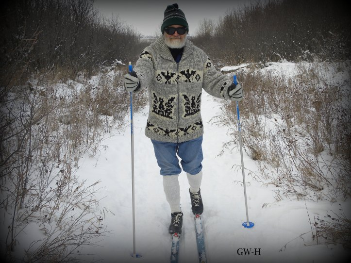 Gracefully cross-country skiing